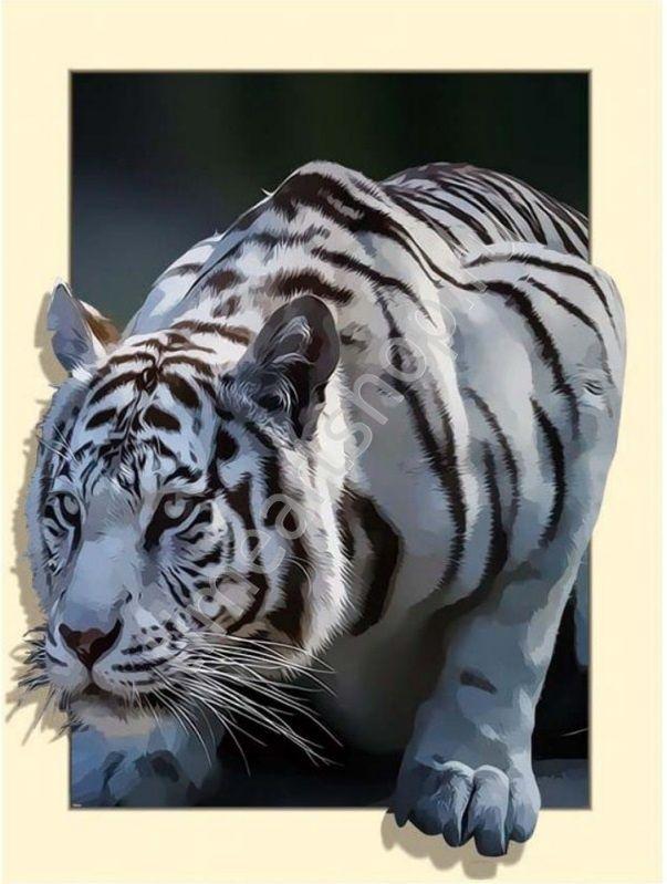 Белый тигр на охоте, картина раскраска по номерам, на ...