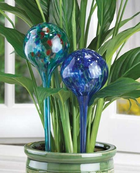 Bonanza Find Everything But The Ordinary Watering Globe Self Watering Plants Watering Bulbs