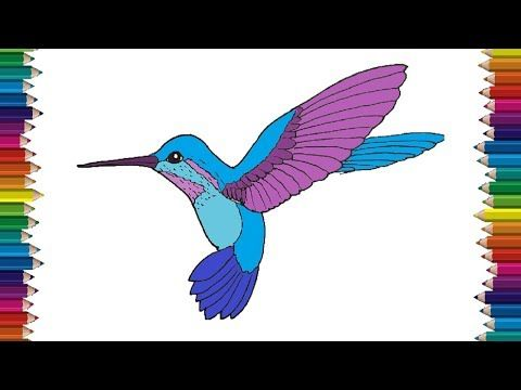 Photo of How to draw a Hummingbird step by step   Bird drawing easy