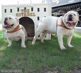General Left And Boo Right Are The Citadel Mascots Washington