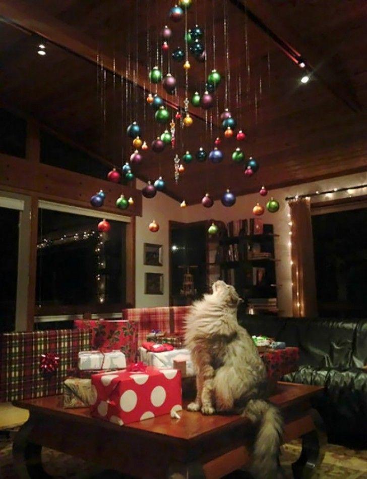 Immagini Divertenti Animali Natale.12 Soluzioni Creative Che I Proprietari Di Animali Hanno Trovato Per Proteggere L Albero Di Nata Idee Per L Albero Di Natale Alberi Di Natale Natale Divertente