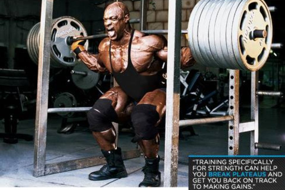 78ece982ae6d3 When you re Ronnie Coleman you can squat 855lbs!! Light weight baby ...