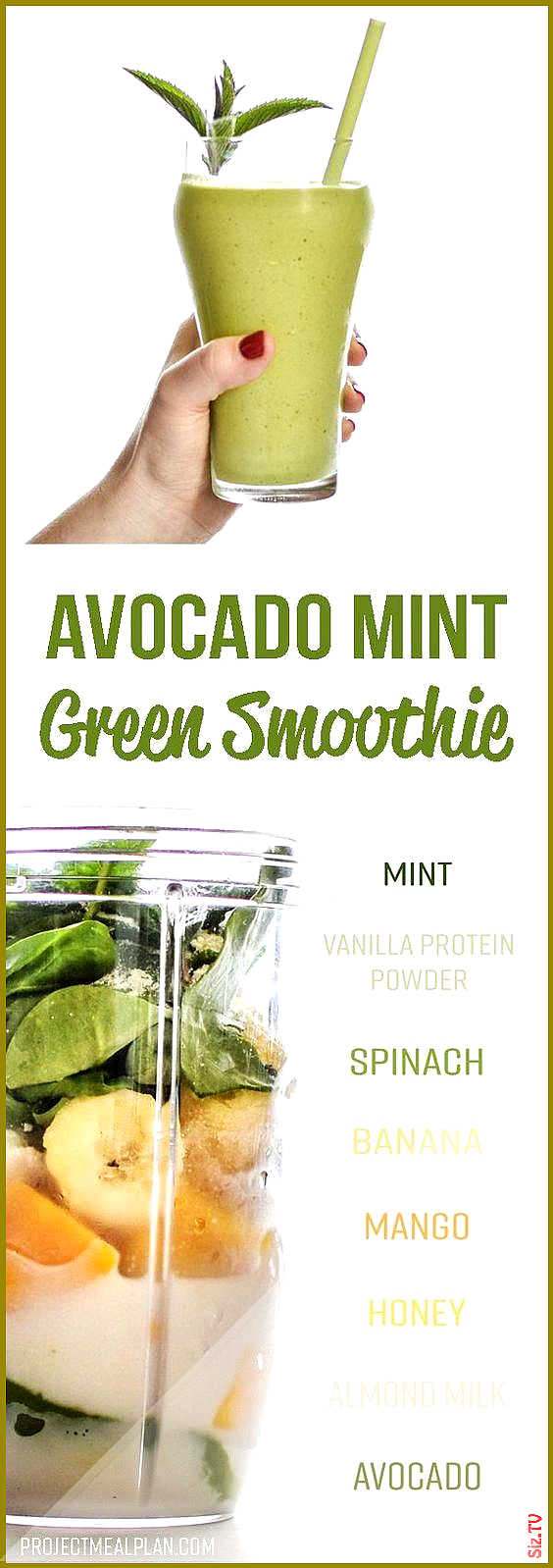 Creamy Avocado Mint Green Smoothie Recipe  Overflowing with fruits veggies and fresh minty goodness