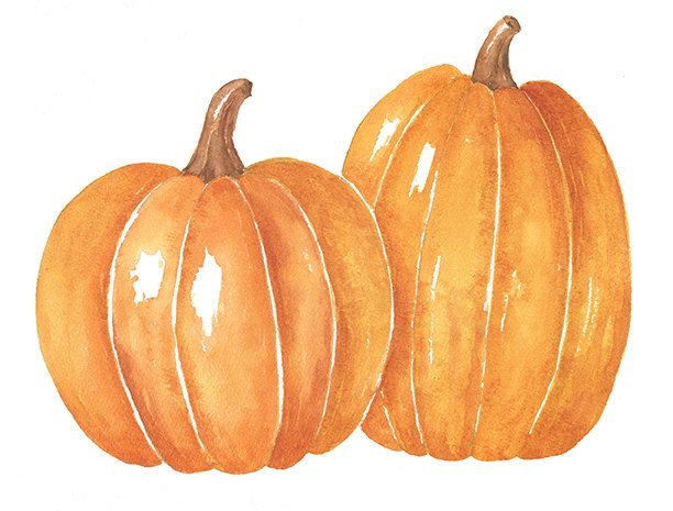 Two Watercolor Pumpkins Png Clipart 8x10 Watercolor Print Instant