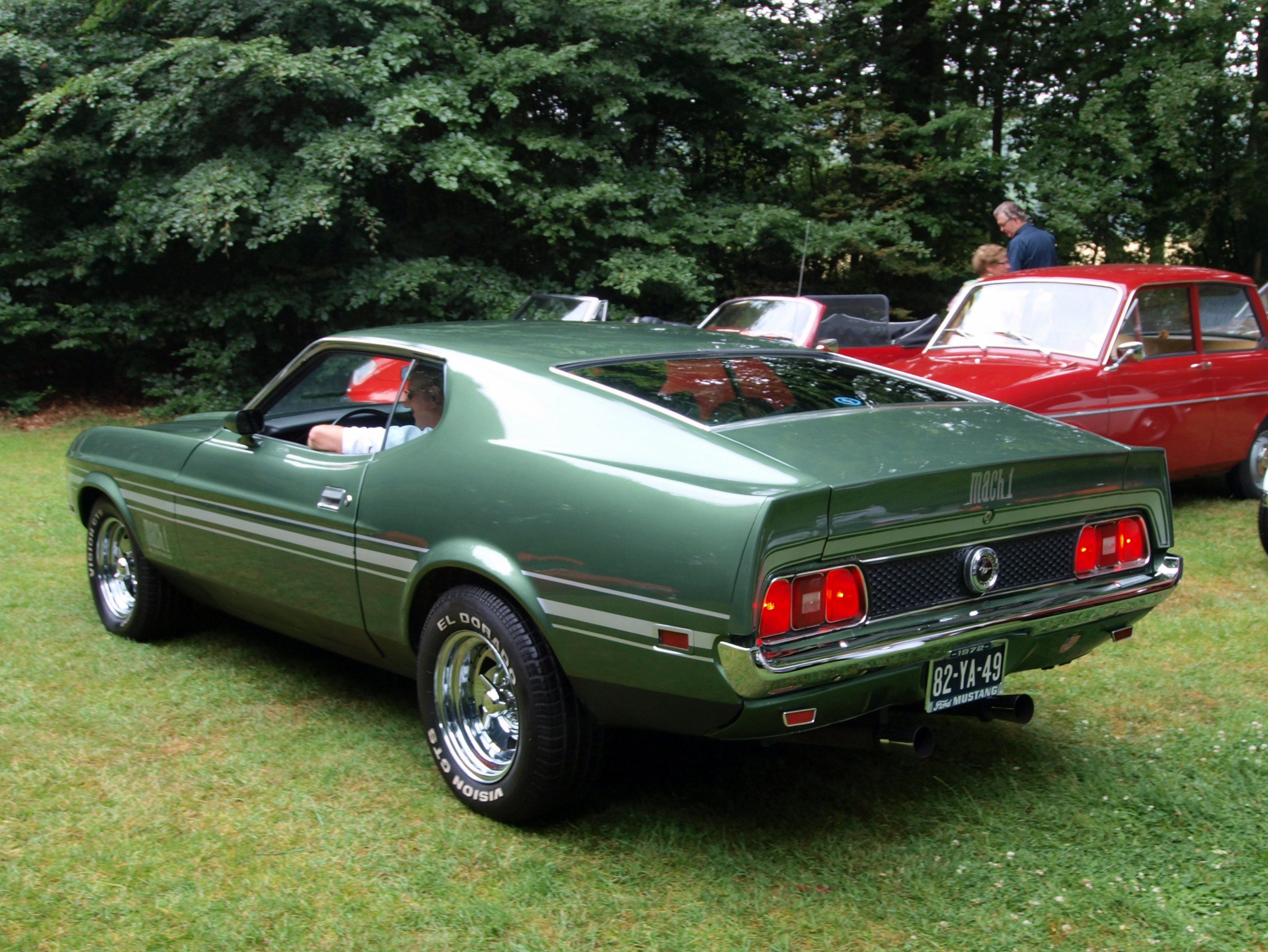 Ford Mustang Mach 1 1973  Rides  Pinterest  Mustangs and 1