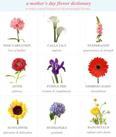 A Mothers Day Flower Dictionary Good Starting Point For Smaller Scale Projects