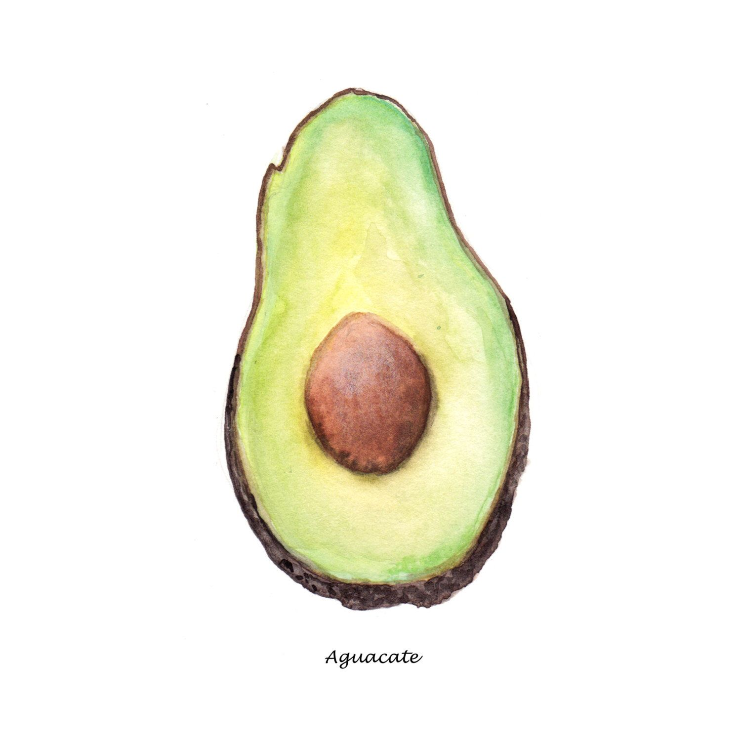 Avocado Watercolor Painting, Food Illustration, Aguacate Drawing ...