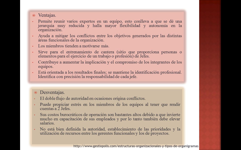 Ventajas Y Desventajas De La Estructura Matricial