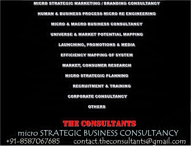 Strategic Marketing Consulting @ http\/\/theconsultantsnetin - systems consultant sample resume