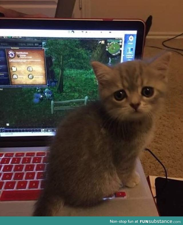 Play with me! :(