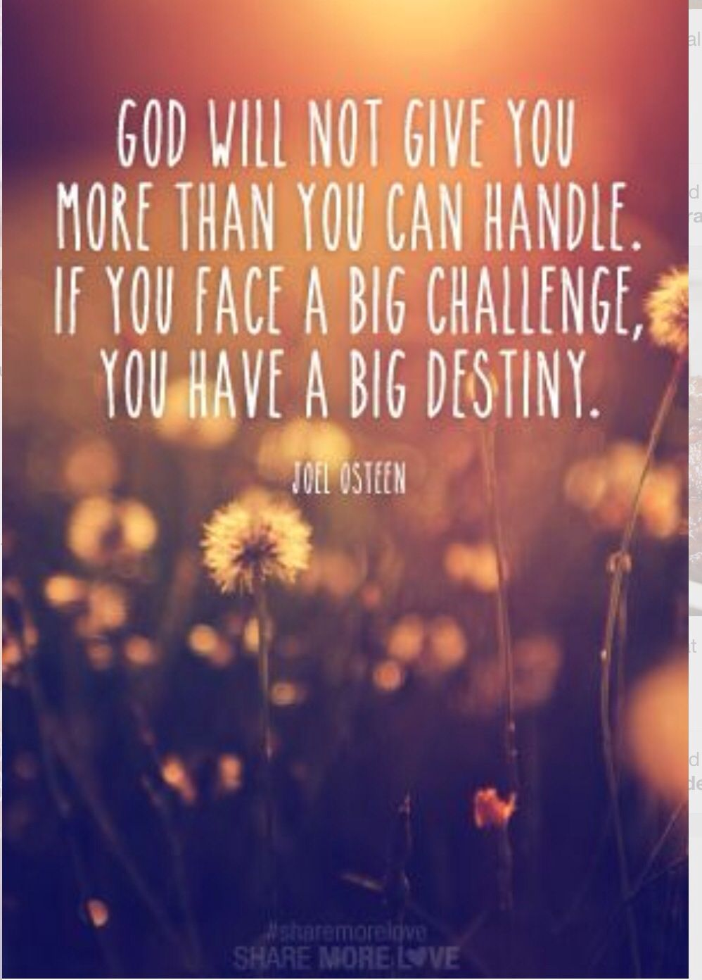 well apparently my destiny is huge lol quotes about strength in