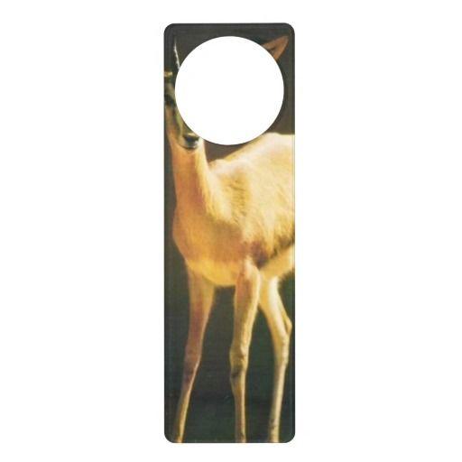 Lovely Gazelle - Door Hanger