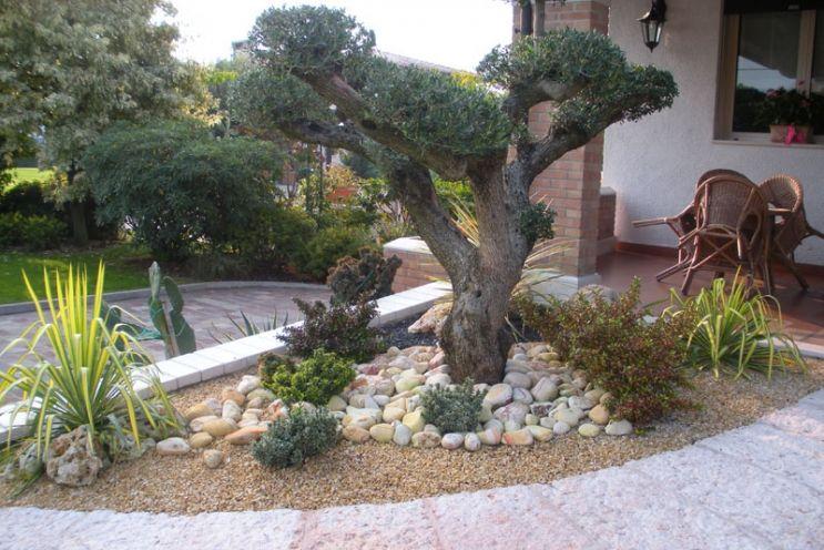 giardini terrazzati - Cerca con Google | Fiore | Pinterest | Pond ...