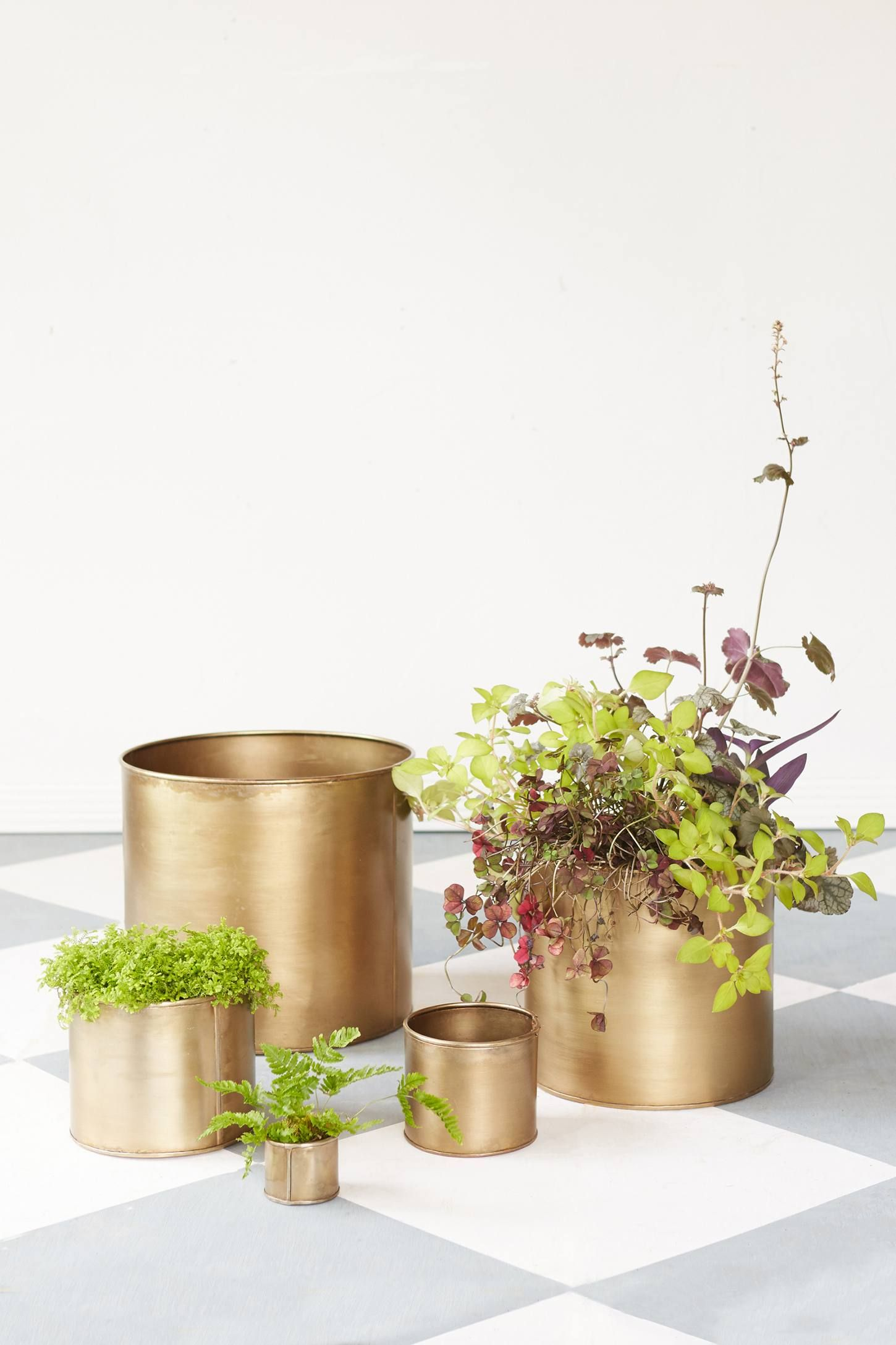 Habit + Form Cylinder Pot - Anthropologie