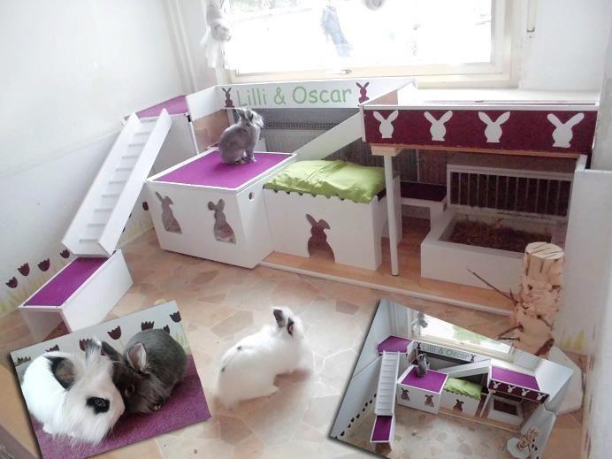 innenhaltung fotos kaninchenhaltung kaninchen und hasenstall. Black Bedroom Furniture Sets. Home Design Ideas