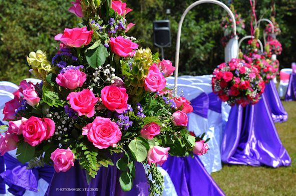 Purple And Fichsia Walkway Stands