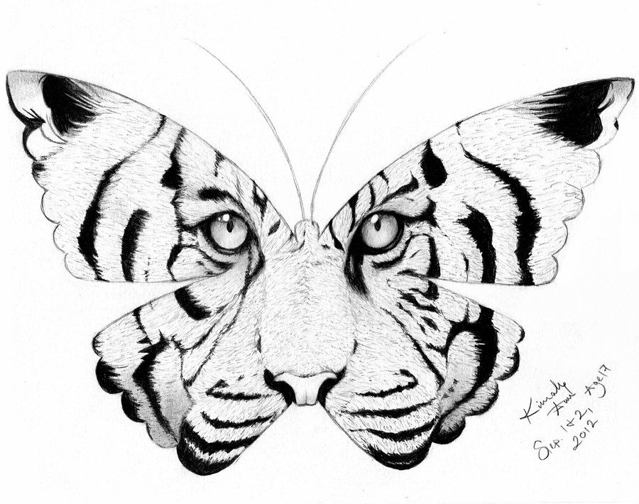 Tiger Wing Kisses Tiger Butterfly Tattoo Butterfly Tattoo Butterfly Tattoo Designs