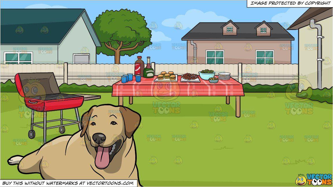 A Resting Goldador Dog and A Backyard Barbecue Background