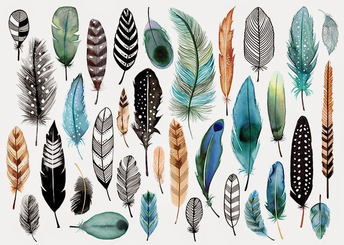 28081edfb margaret berg feathers - Google Search Grey Feather Meaning, Finding  Feathers, White Feathers,
