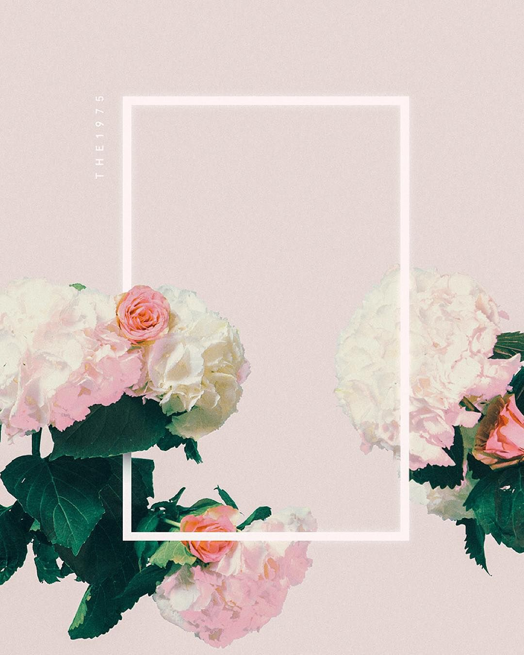 ✿*゚ @crystallinelife ✿*゚