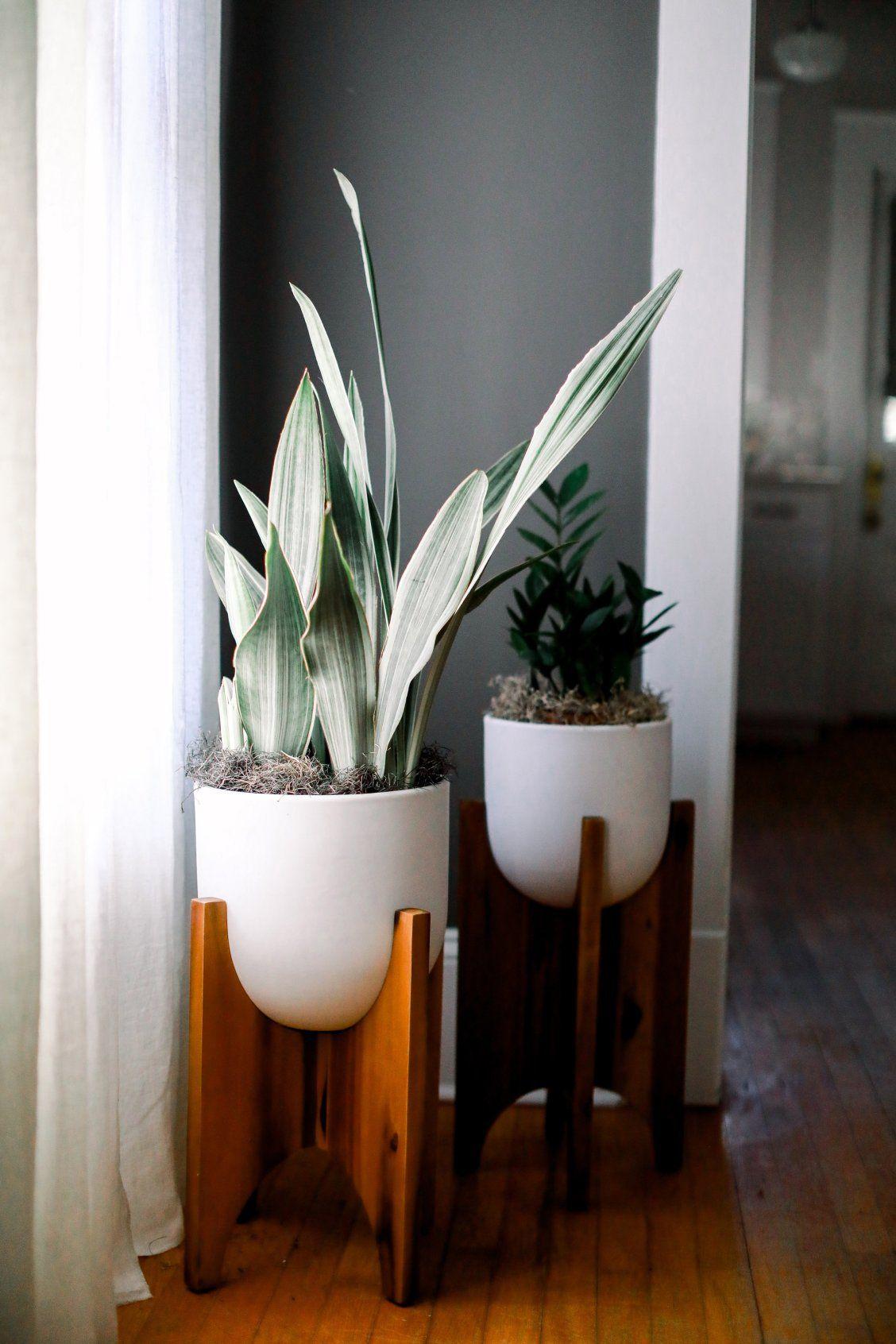 west elm planters | West elm planter, Craftsman bungalows ...