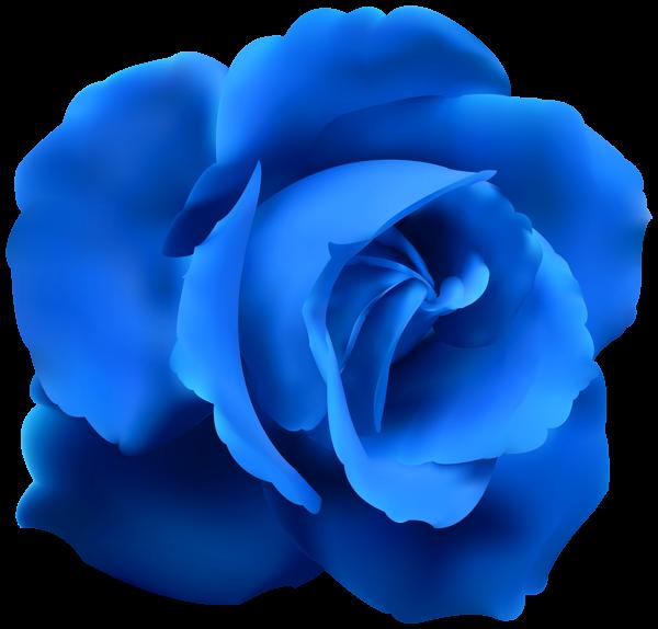 Blue Rose Clip Art Png Image Clip Art Red Roses Flower Art