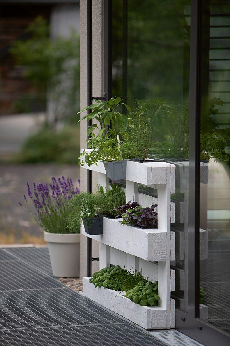 DIY - Kräutergarten für Balkon und Terrasse mit Europalette #kräutergartenpalette