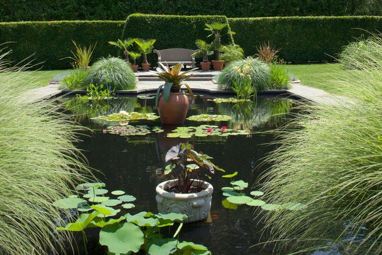 7dba572cee05484a8a68afa56f3811fb - City Green Public Gardens Of New York