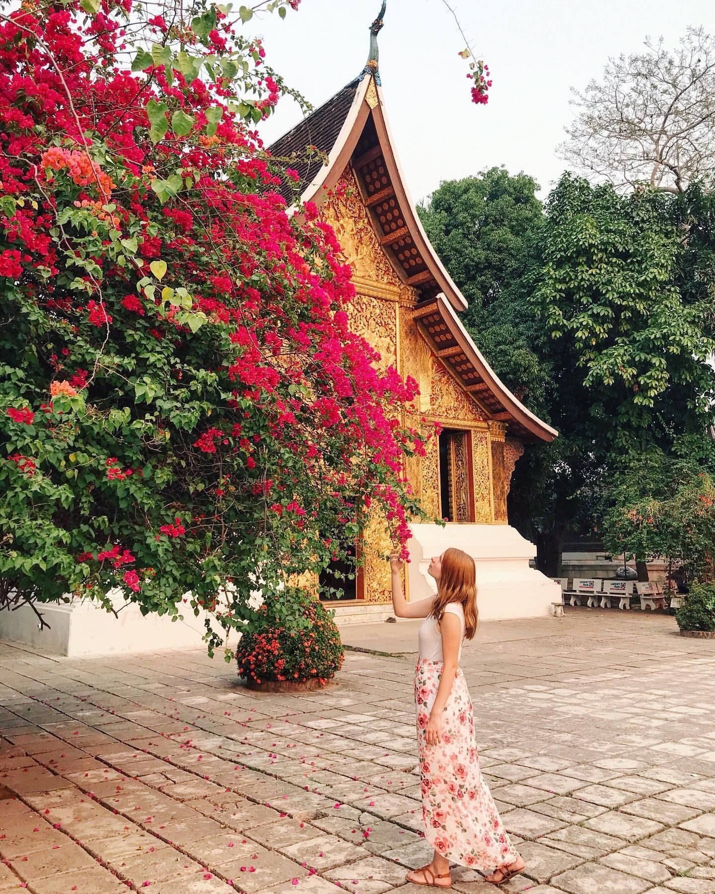 """Travel brings power and love back into your life."" ― Rumi Jalalud-Din  . . Post by @wanderlust.rachel . . Follow @wanderlust.rachel for more awesome content! . . #visitlaos #explorelaos #luangprabang #southeastasia #globetrotter #tasteintravel #mytinyatlas #prettylittletrips #dnescestujem #girlsabroad #travelgirlsgo #darlingescapes #girlsvsglobe #dametraveler #womenwhotravel #sheisnotlost #gltlove #wearetravelgirls #ladiesgoneglobal #globelletravels #shetravels #femmetravel .."