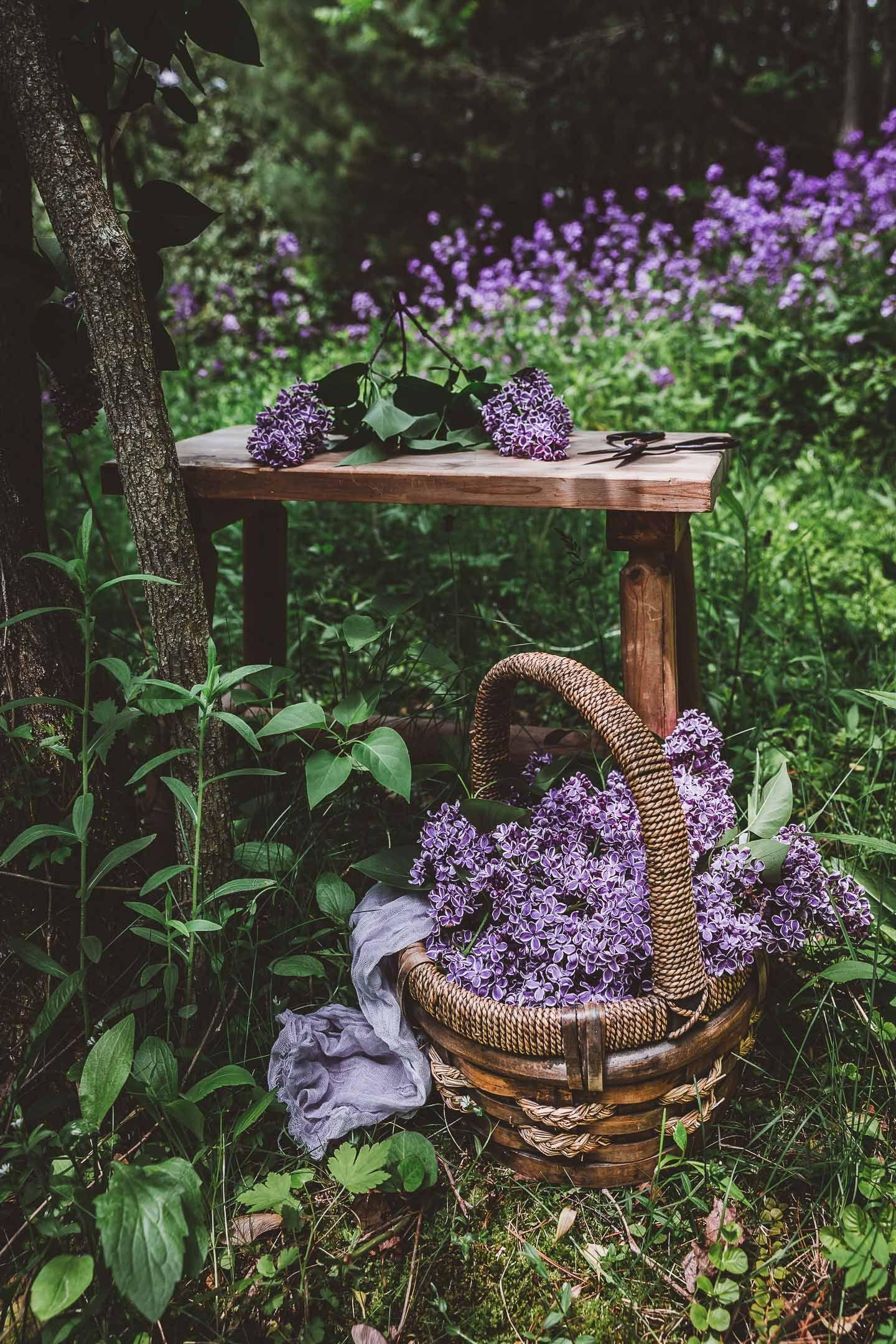 Pin On Garden Goodies