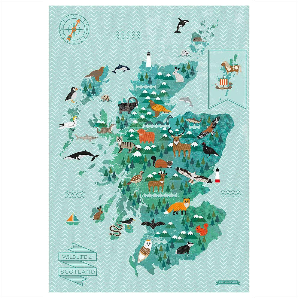 Wildlife of scotland map animal kingdom artwork edinburgh and wildlife of scotland map art prints gicle gocco digital prints posters edinburgh and scottish animal kingdom life at sea gift ideas for kids gumiabroncs Gallery