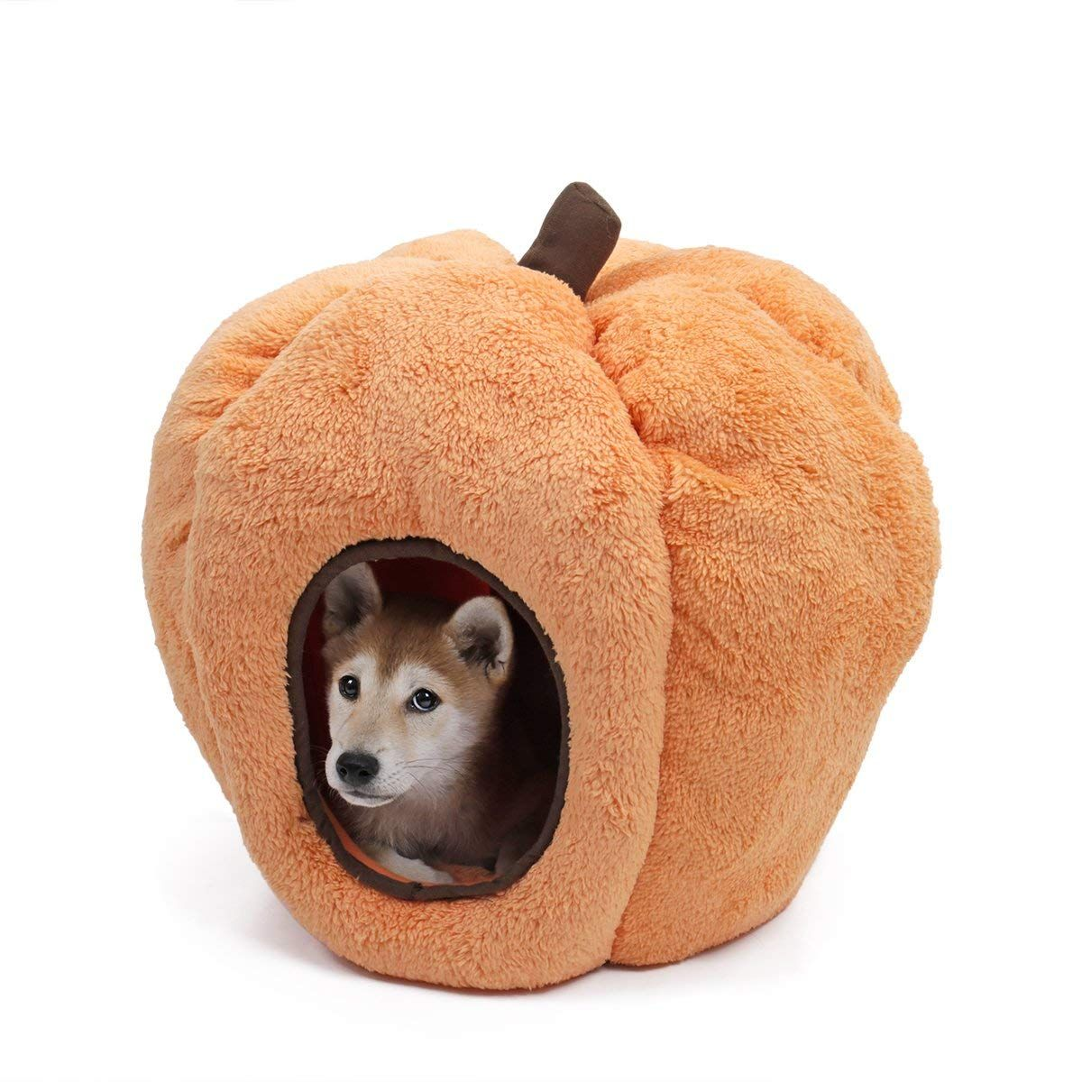 Halloween Cozy Cat Bed, PAWZ Road Puppy Hut Kitty Cave