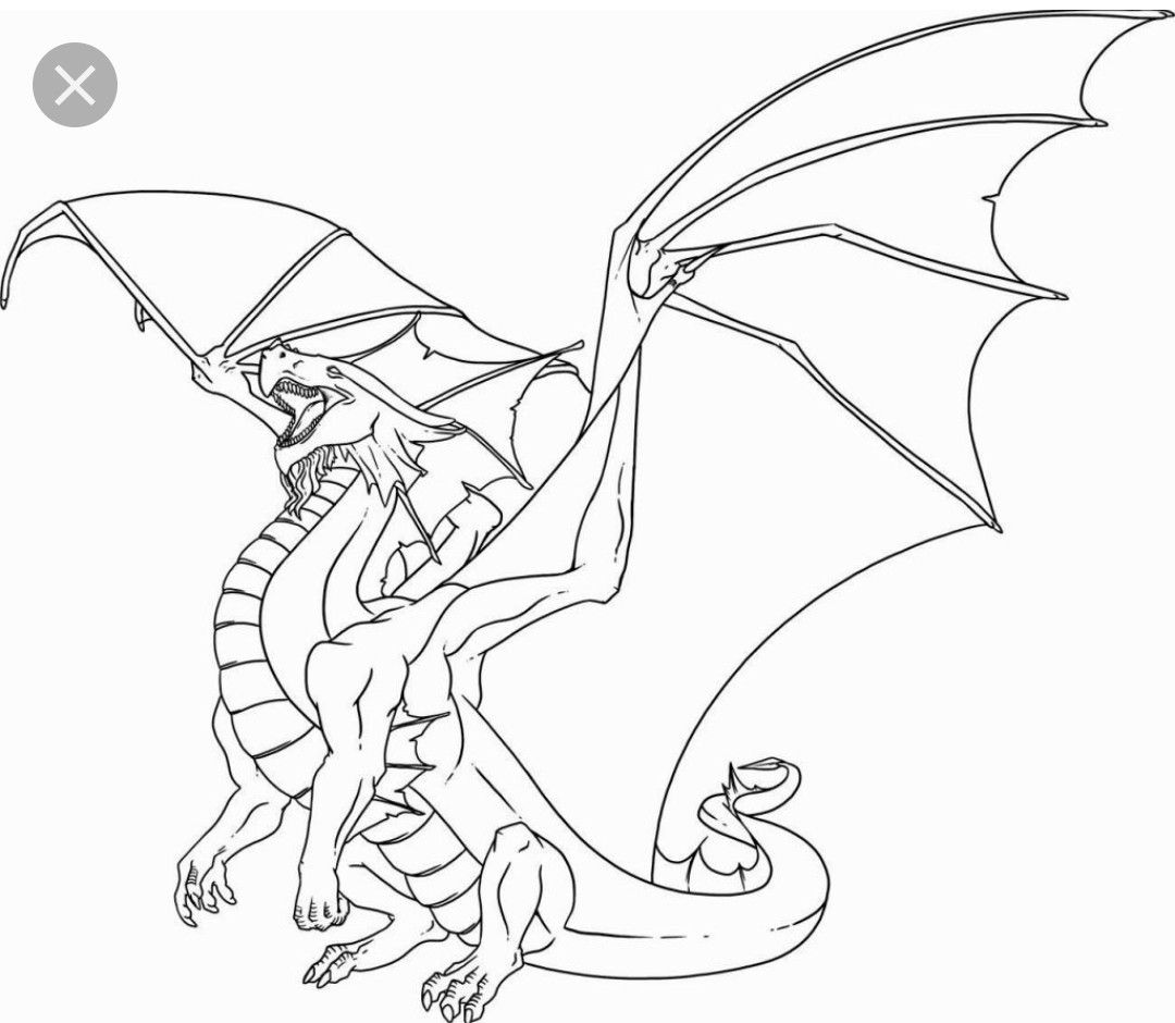 Pin By Tybalt Fatespeaker On Dragons Armors And Swords Dragon Coloring Page Dragon Drawing Dragon Images