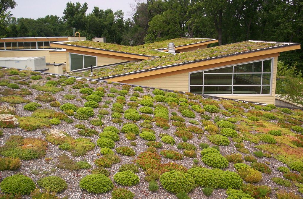 5 Reasons to Install a Green Roof on your House | renewable energy ...