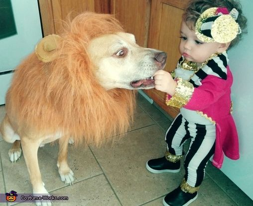 Lion And Ring Master Halloween Costume Contest At Costume Works