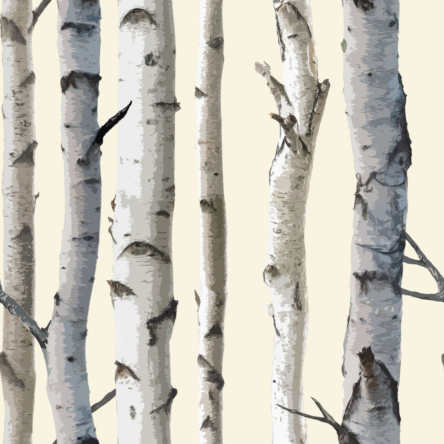 Birch tree wallpaper grey peel and stick wallpapers for - Birch tree wallpaper peel and stick ...
