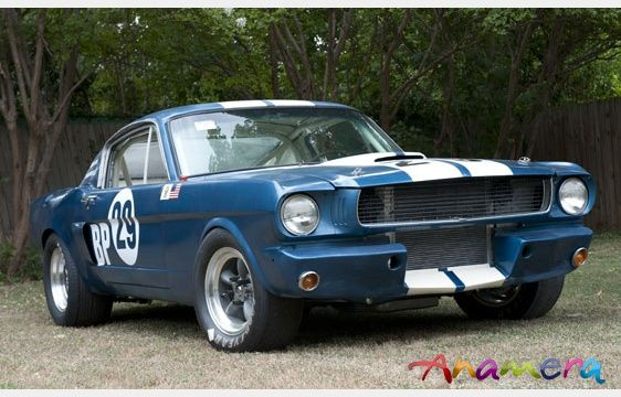 1966 Shelby Mustang Gt350 Scca B Production Racing Car United