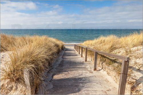 poster weg zum strand an der ostsee ostsee poster und leinwandbilder ostsee ostsee strand. Black Bedroom Furniture Sets. Home Design Ideas