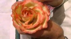 Zimna Porcelana Kwiaty Youtube Cold Porcelain Flowers Cold Porcelain Porcelain Flowers