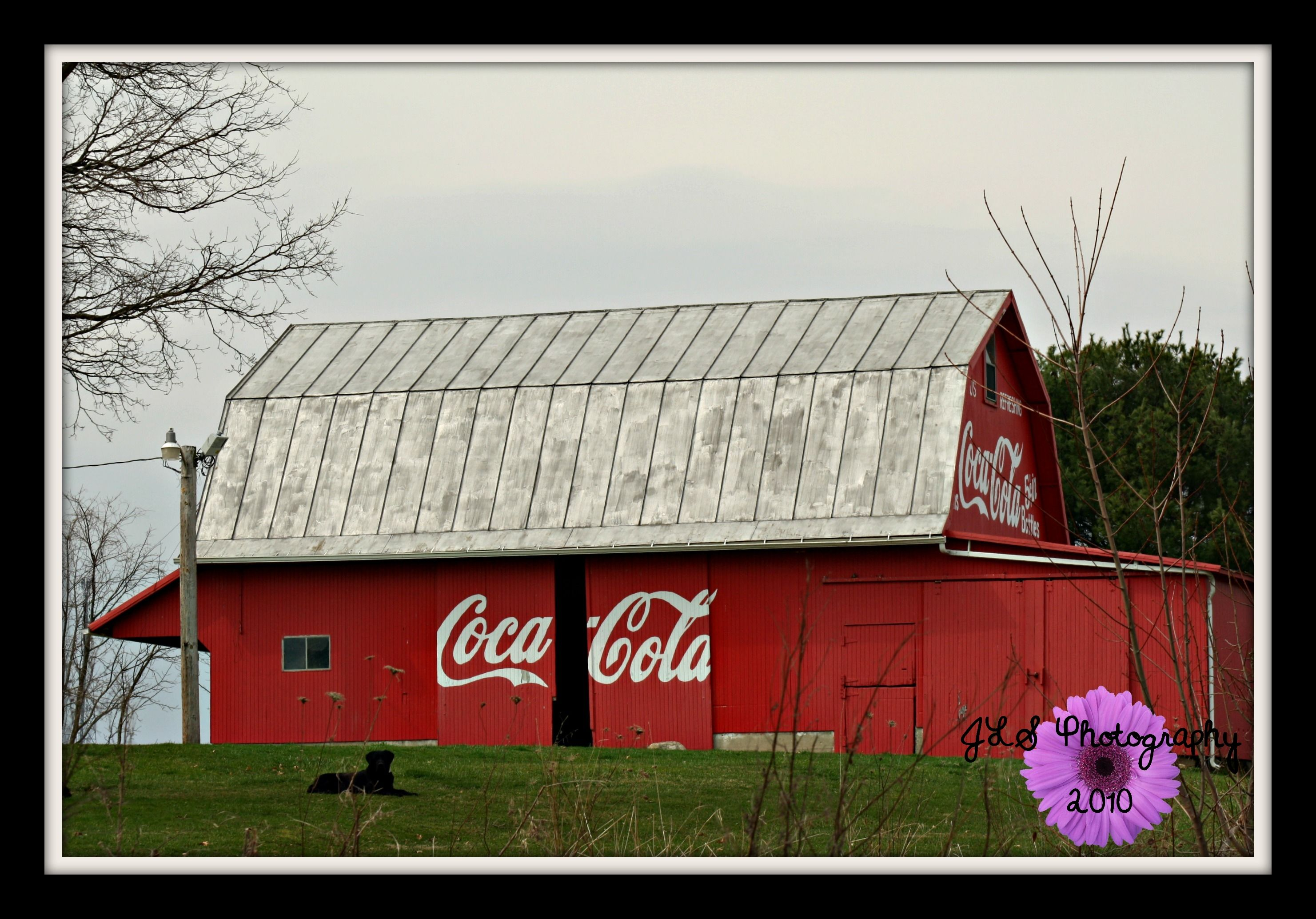 Coca Cola Barn Barns Barn Signs Barn Art Barn