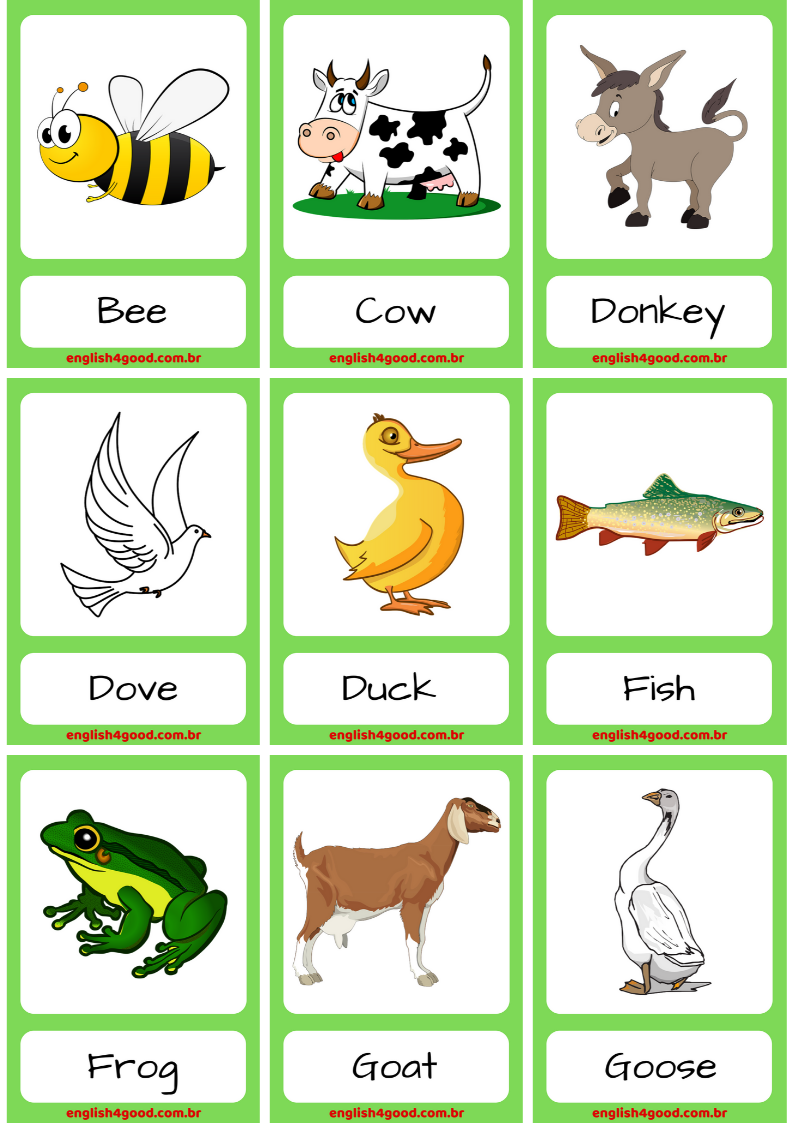 Farm Animals English4Good Vocabulary practice Animal