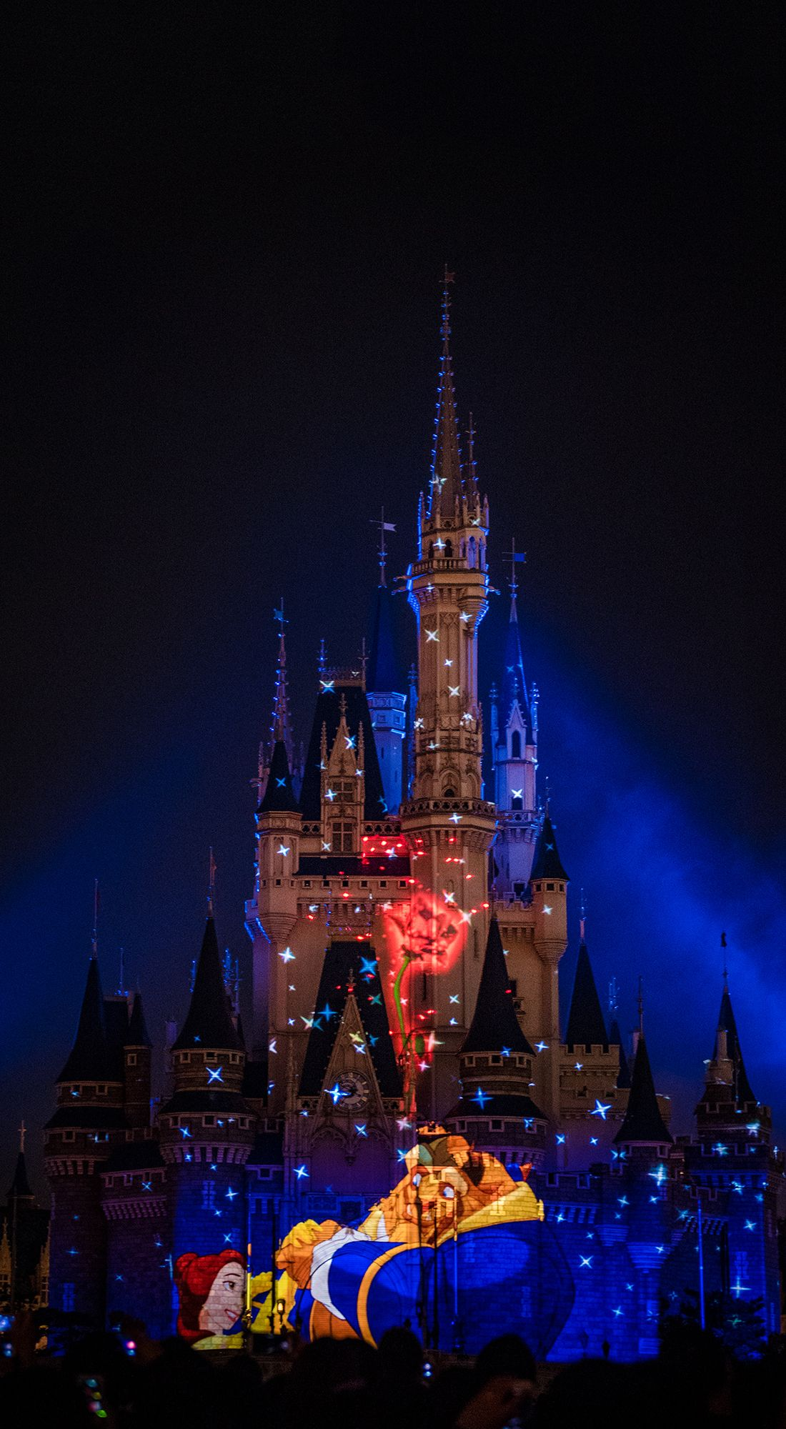 Cute Wallpapers Quotes Walt Disney Happily Ever After Replacing Wishes Fireworks At Magic