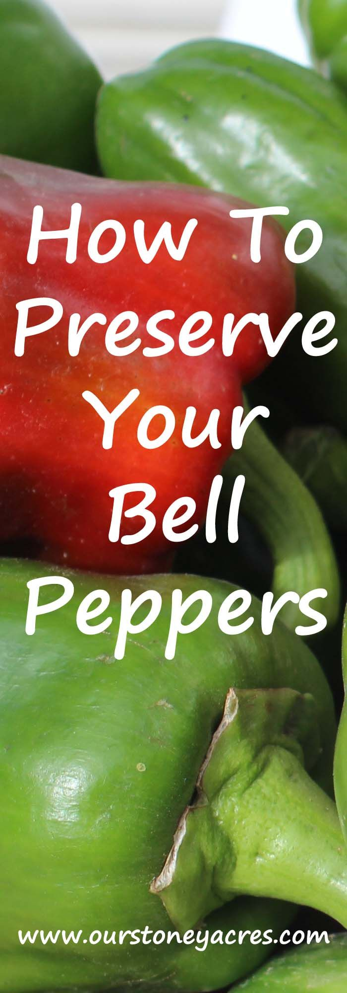 Preserving Bell Peppers - 3 Easy Steps - Our Stoney Acres