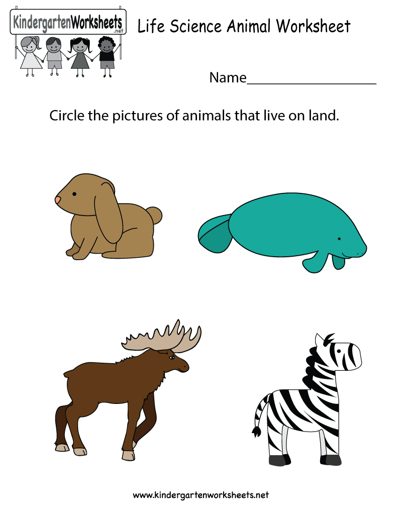 Kids can find out which animals live on land in this life science