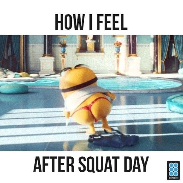 7dc02eff807ea1af74c1547616501169 sixpac workout squat meme fitness memes pinterest squat
