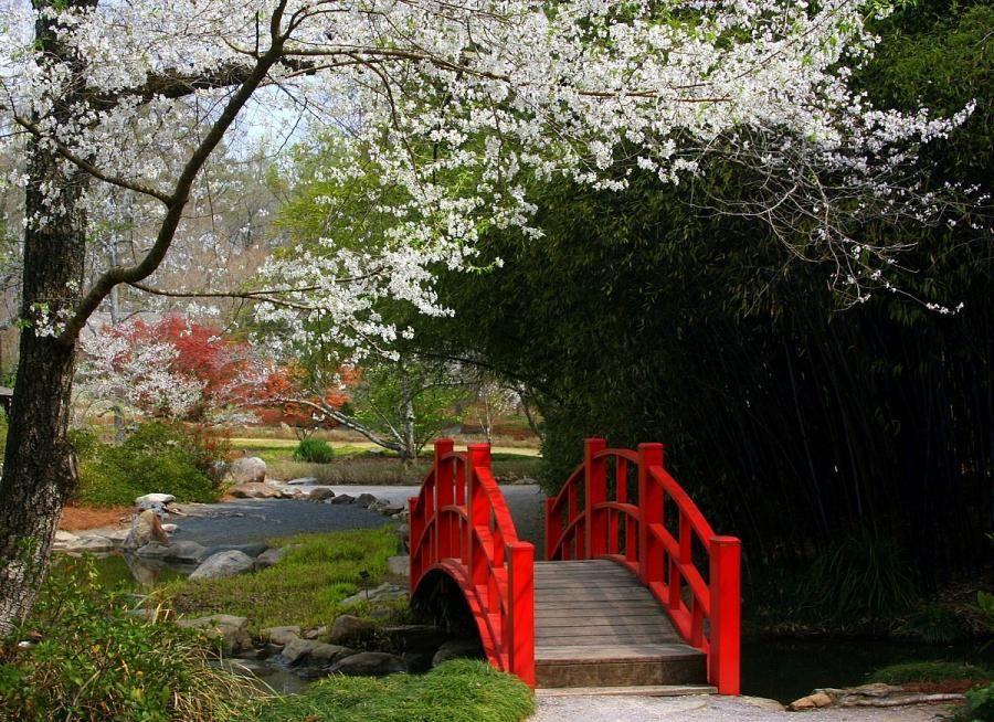 Red Bridge At Botanical Gardens, Birmingham Alabama