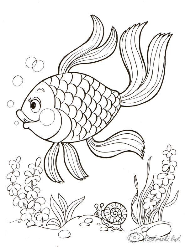 раскраски подводный мир подводный мир рыбка водоросли