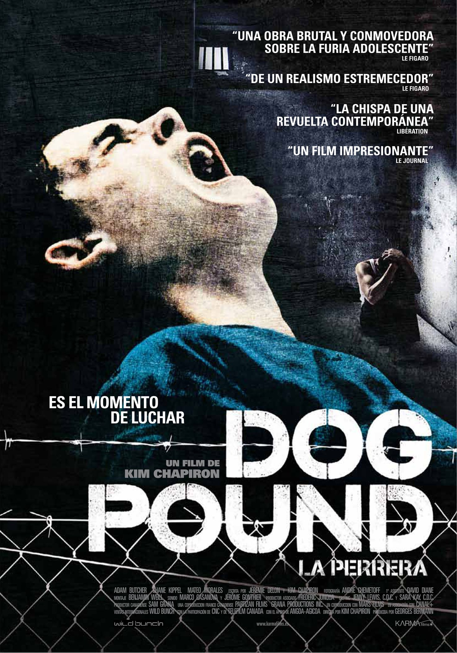 Where Can I Watch Dog Pound Online For Free