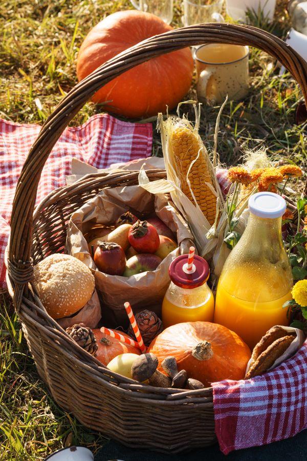autumn picnic pinterest pique nique automne et repas. Black Bedroom Furniture Sets. Home Design Ideas