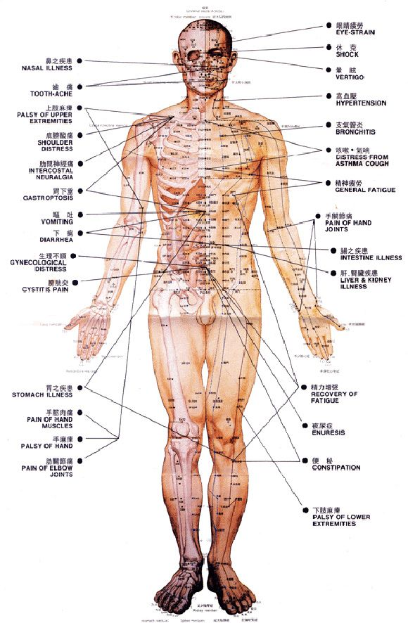 Pressure Points And What They Do How To Access Them Google Search